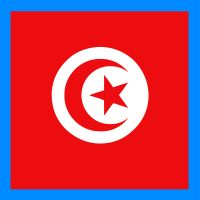 stickers plaque tunisie