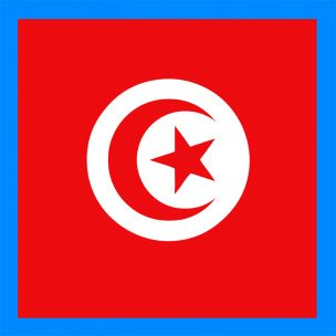http://www.autocovering.fr/134-thickbox/stickers-plaque-tunisie.jpg