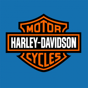 http://www.autocovering.fr/158-255-thickbox/stickers-harleyd.jpg